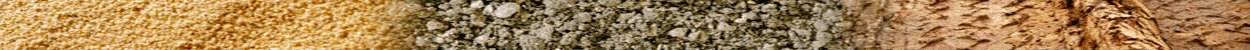 A horizontal border image of sand, gravel, and dirt